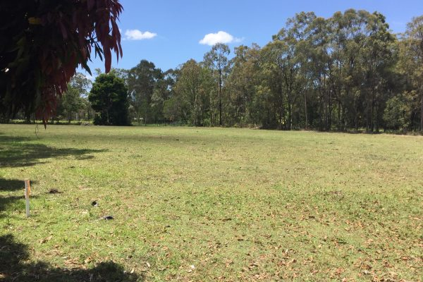 Candlenut Grove - Caboolture Acreage for Sale