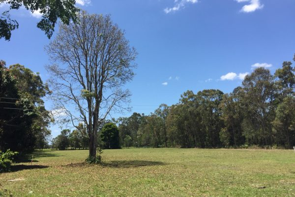 Candlenut Grove - Caboolture Land